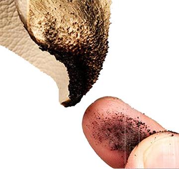 Da thật cháy có mùi khét của chất sừng